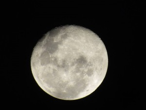 Moon Photo of Mariana Pinheiro